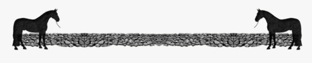 wall_separator