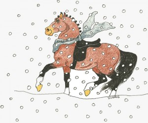 SnowflakelogoRVSD_500px