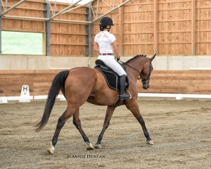 Darcy's student Rebecca Wolfe riding Celtic Maiden.