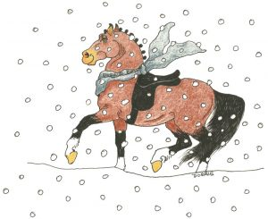 Winter Dressage Schooling Shows