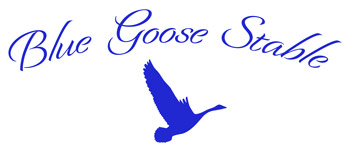 Blue Goose Stable, LLC